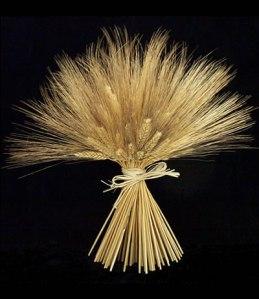 wheat-sheaf-bundle